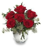 Vazo içerisinde 5 adet kırmızı gül  Kırklareli güvenli kaliteli hızlı çiçek