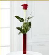 Vazo içerisinde 1 adet kırmızı gül  Kırklareli İnternetten çiçek siparişi