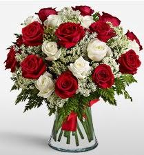 Vazoda 12 kırmızı 12 beyaz gül tanzimi  Kırklareli çiçek satışı