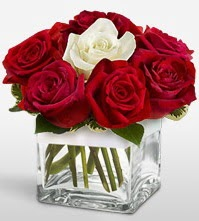 Tek aşkımsın çiçeği 8 kırmızı 1 beyaz gül  Kırklareli çiçek satışı