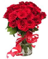21 adet vazo içerisinde kırmızı gül  Kırklareli çiçek online çiçek siparişi