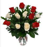 Vazo içerisinde 6 kırmızı 6 beyaz gül  Kırklareli kaliteli taze ve ucuz çiçekler