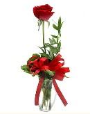 vazo içerisinde 1 adet kırmızı gül  Kırklareli hediye sevgilime hediye çiçek