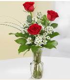 Vazo içerisinde 3 adet kırmızı gül  Kırklareli çiçek online çiçek siparişi