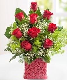 Cam içerisinde 9 adet kırmızı gül  Kırklareli online çiçekçi , çiçek siparişi