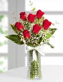 Cam vazoda 7 adet kırmızı gül  Kırklareli çiçek servisi , çiçekçi adresleri