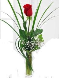 Cam içerisinde 1 kırmızı gül  Kırklareli uluslararası çiçek gönderme