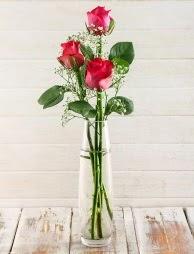 Cam içerisinde 3 kırmızı gül  Kırklareli çiçek online çiçek siparişi