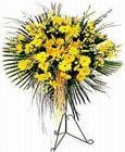 Kırklareli çiçek siparişi vermek  Sari kazablanka Ferforje
