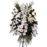 Kırklareli çiçek gönderme  Ferforje beyaz renkli kazablanka
