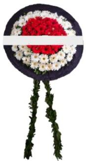 mozele çiçeği  Kırklareli hediye çiçek yolla