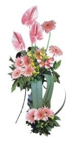 Kırklareli internetten çiçek siparişi  Pembe Antoryum Harikalar Rüyasi