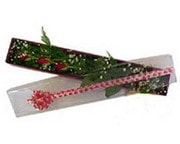 Kırklareli kaliteli taze ve ucuz çiçekler  3 adet gül.kutu yaldizlidir.