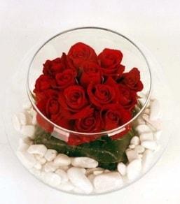 Cam fanusta 11 adet kırmızı gül  Kırklareli anneler günü çiçek yolla