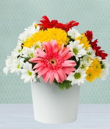 Seramik Vazoda Gelbera ve Papatya  Kırklareli anneler günü çiçek yolla