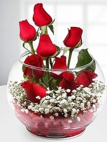 Kırmızı Mutluluk fanusta 9 kırmızı gül  Kırklareli yurtiçi ve yurtdışı çiçek siparişi