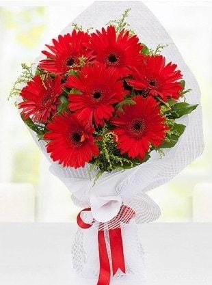 Kırmızı Gelbera Buketi  Kırklareli İnternetten çiçek siparişi