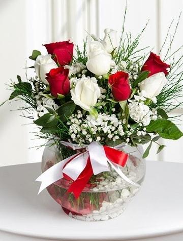 Aşk Küresi  5 beyaz 5 kırmızı gül fanusta  Kırklareli online çiçekçi , çiçek siparişi