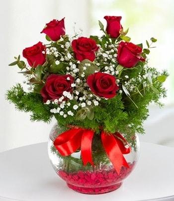 fanus Vazoda 7 Gül  Kırklareli çiçek servisi , çiçekçi adresleri