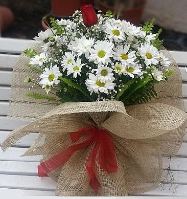 Papatya 1 adet kırmızı gül buketi  Kırklareli çiçek yolla , çiçek gönder , çiçekçi