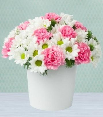 Seramik vazoda papatya ve kır çiçekleri  Kırklareli yurtiçi ve yurtdışı çiçek siparişi