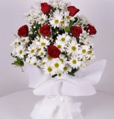 7 adet kırmızı gül ve papatyalar krizantem  Kırklareli online çiçekçi , çiçek siparişi