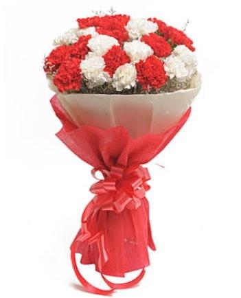 21 adet kırmızı beyaz karanfil buketi  Kırklareli çiçek online çiçek siparişi