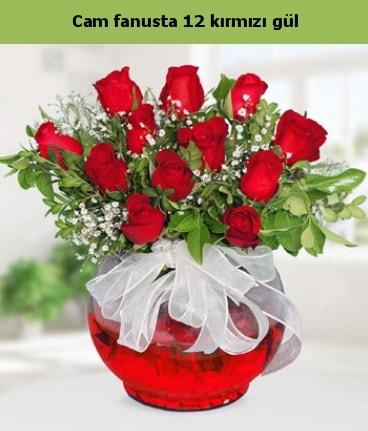 Cam içerisinde 12 adet kırmızı gül  Kırklareli online çiçekçi , çiçek siparişi