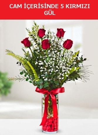 Cam içerisinde 5 adet kırmızı gül  Kırklareli yurtiçi ve yurtdışı çiçek siparişi