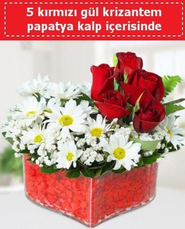 mika kalp içerisinde 5 kırmızı gül papatya  Kırklareli anneler günü çiçek yolla