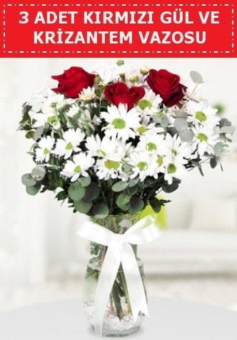 3 kırmızı gül ve camda krizantem çiçekleri  Kırklareli anneler günü çiçek yolla