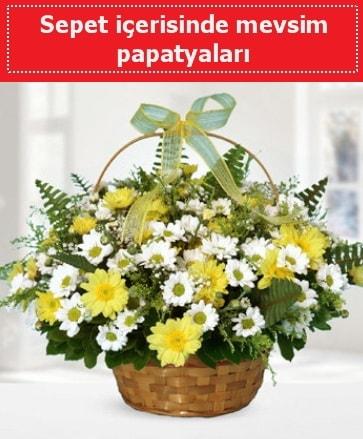 Sepet içerisinde mevsim papatyaları  Kırklareli çiçek mağazası , çiçekçi adresleri