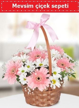 Mevsim kır çiçek sepeti  Kırklareli çiçek servisi , çiçekçi adresleri