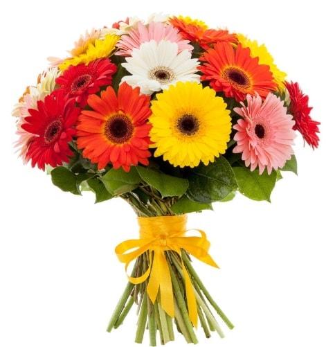 Gerbera demeti buketi  Kırklareli çiçek online çiçek siparişi