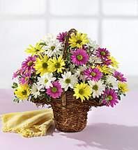 Kırklareli çiçek yolla , çiçek gönder , çiçekçi   Mevsim çiçekleri sepeti